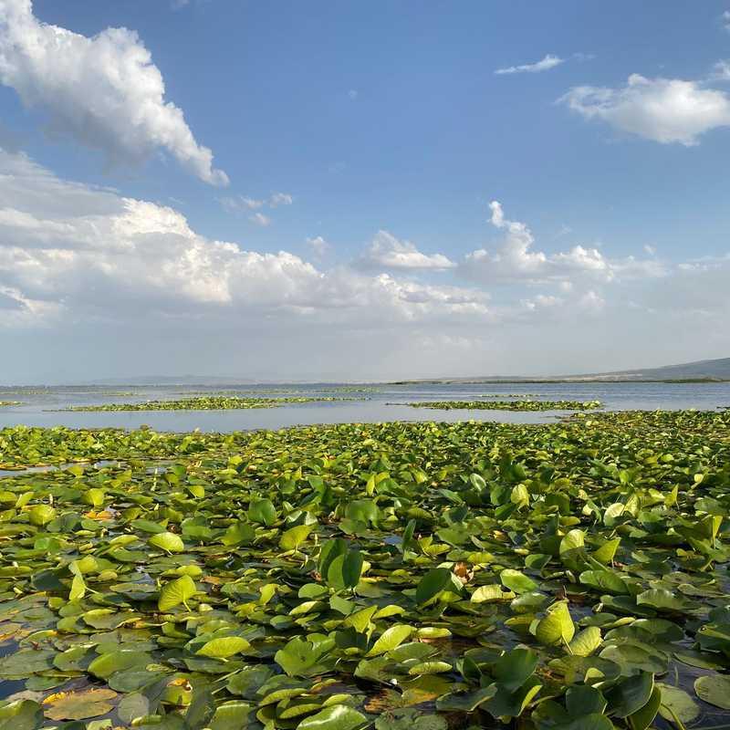 Isikli Lake