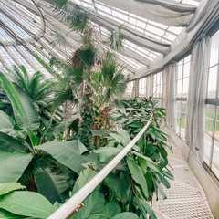 Copenhagen Botanical Garden / Botanisk Have - Photos by Real Travelers, Ratings, and Other Practical Information