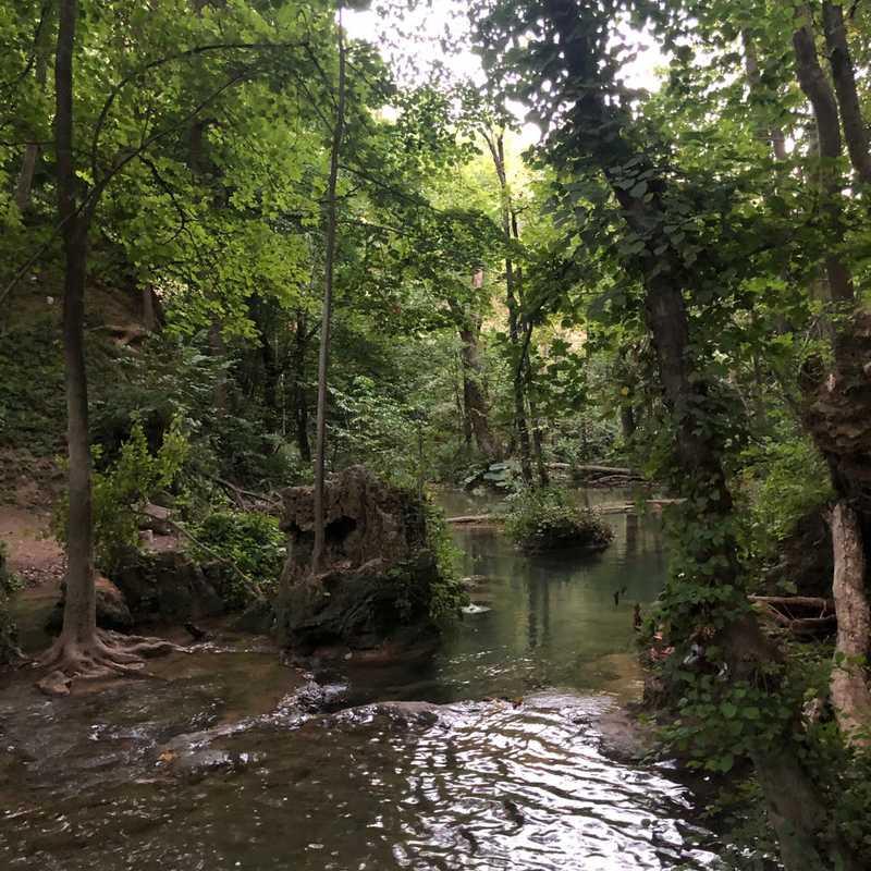 Waterfall Blederije