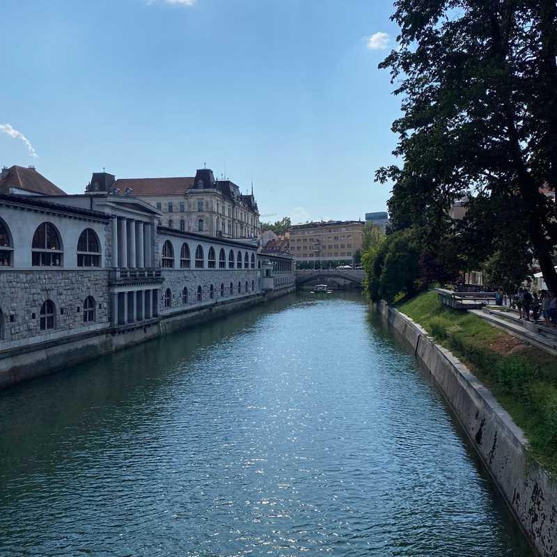 Zmajski most, Ljubljana