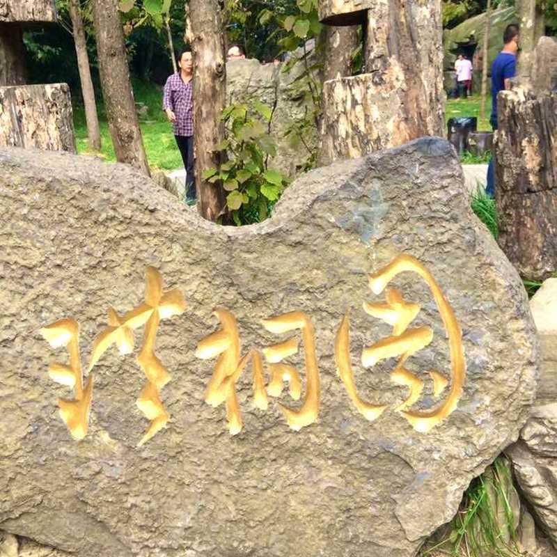 Zhangjiang Hi-Tech Park