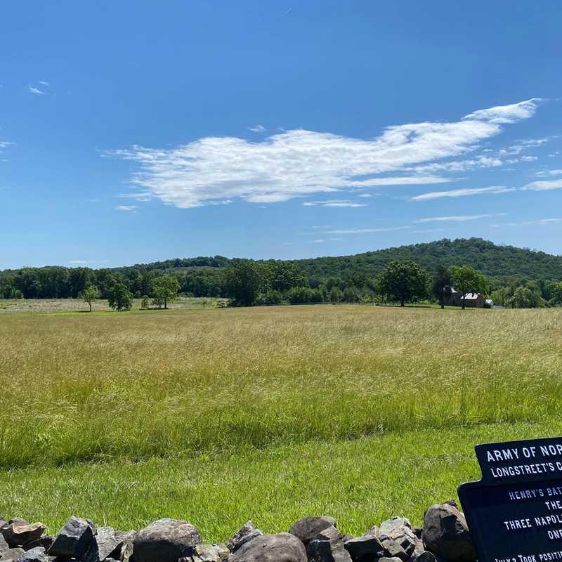 "Branch (North Carolina) Artillery ""Latham's Battery"""