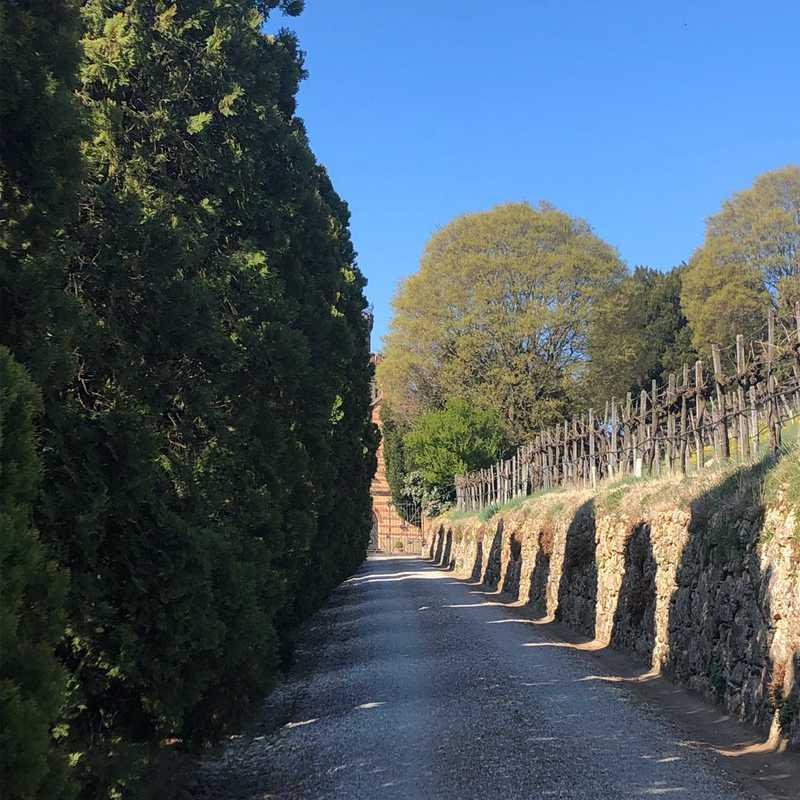 Castello Bonomi Tenute In Franciacorta
