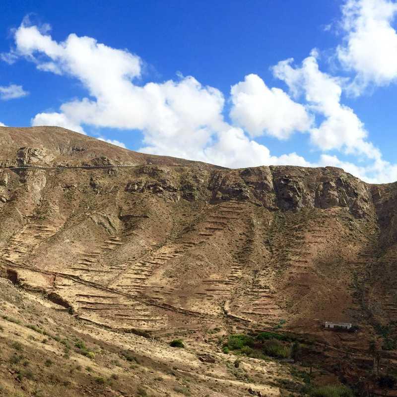 Viewpoint Betancuria