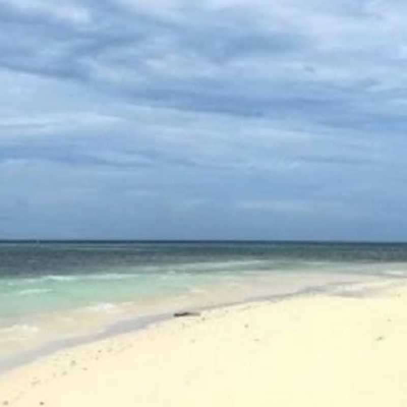 Star Fish Island Palawan
