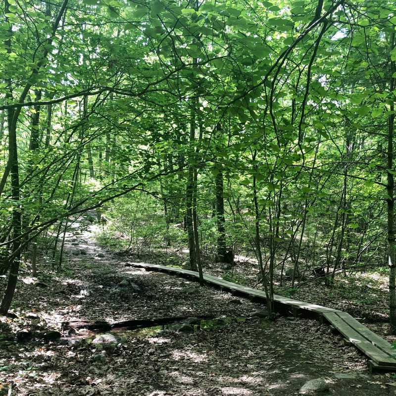 Wolf Hill Forest Preserve