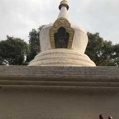 Punakha   POPULAR Trips, Photos, Ratings & Practical Information