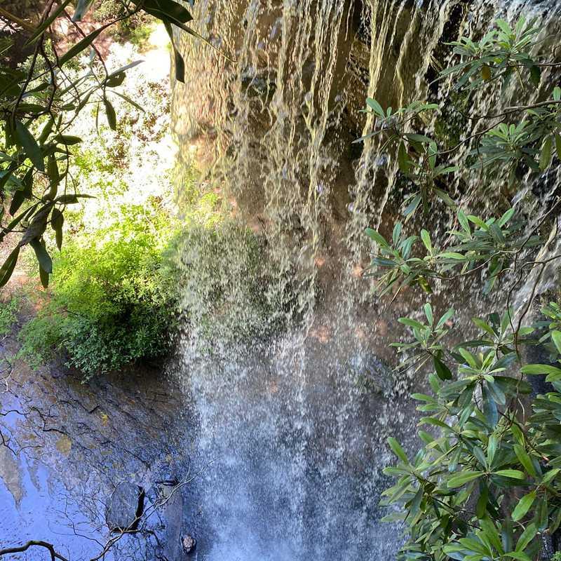 Colditz Cove State Natural Area