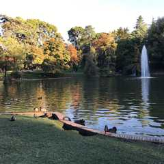 El Retiro Park - Photos by Real Travelers, Ratings, and Other Practical Information