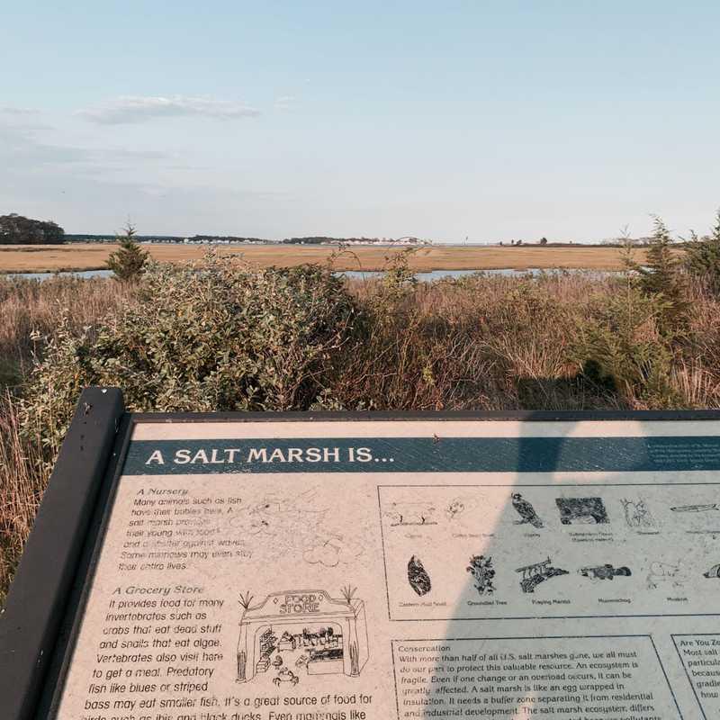 Meigs Point Nature Center