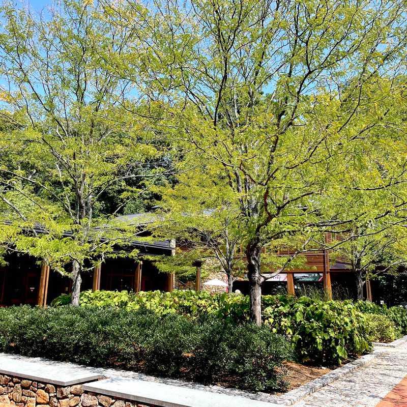David M. Rubenstein Visitor Center and Smith Education Center