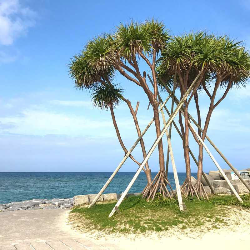 Okinawa Island Escape | 3 days trip itinerary, map & gallery