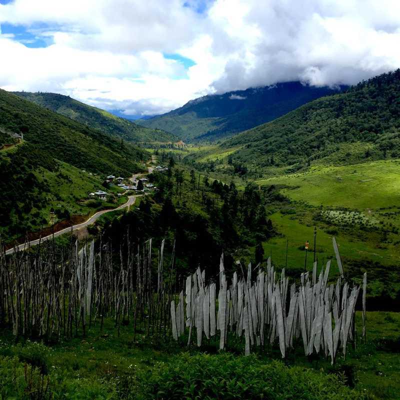 Rukubjee (Snake Head Valley)