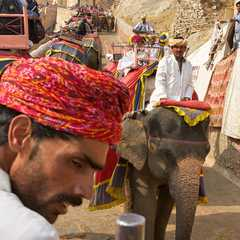 Amber Fort - Photos by Real Travelers, Ratings, and Other Practical Information