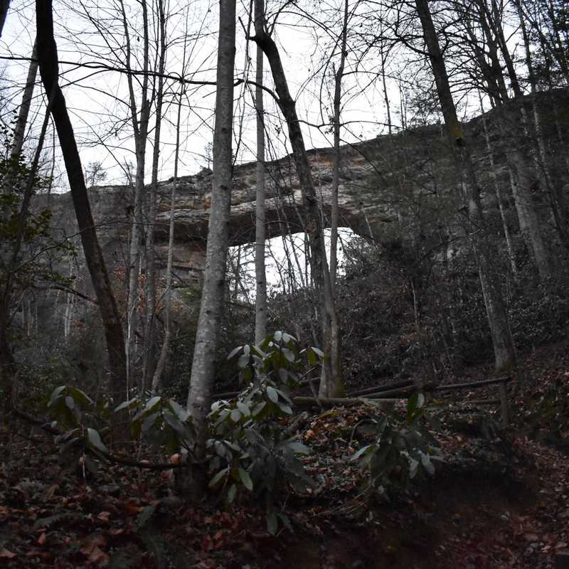 Natural Bridge Road