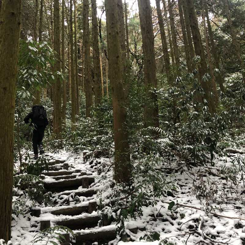 Iimori Shrine