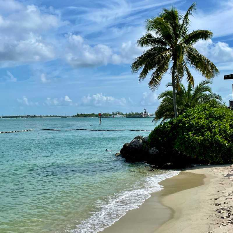 Trip Blog Post by @Jennivardier: Key West, United States Aug-2021 | 6 days in Aug/Sep (itinerary, map & gallery)