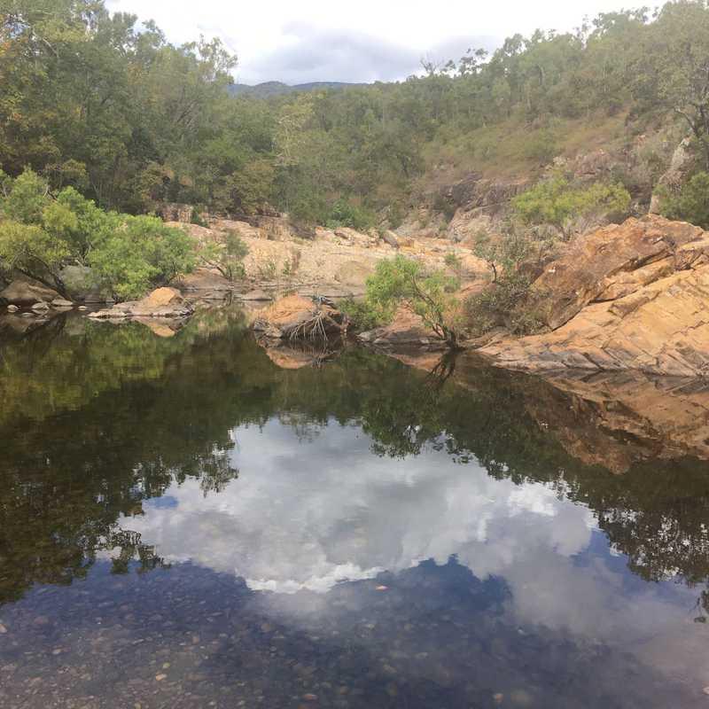 Alligator Creek Lookout