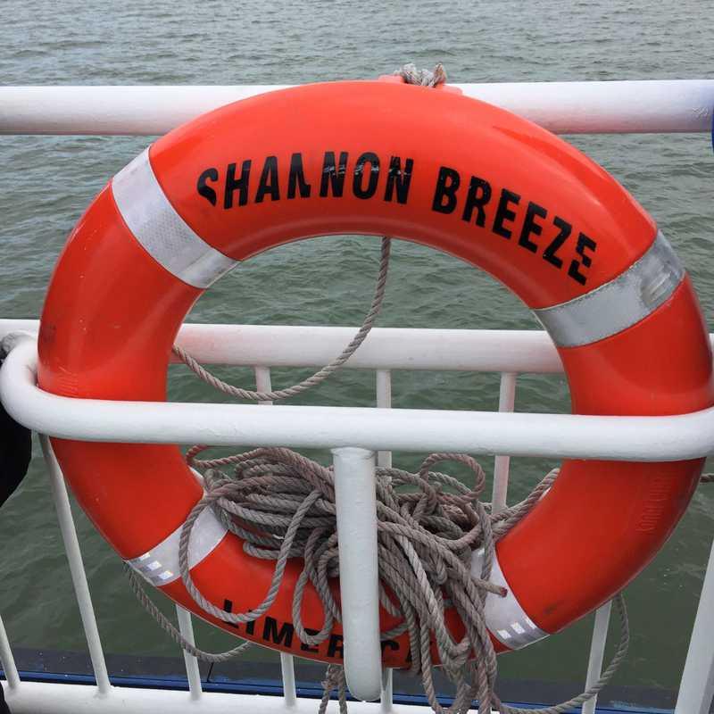 Shannon Ferry - Killimer
