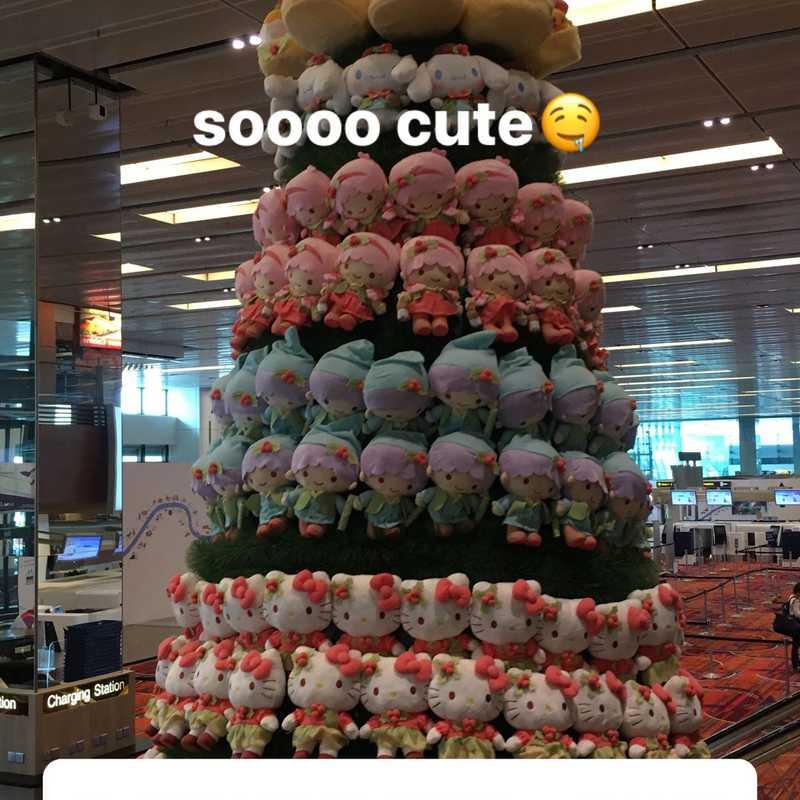 Changi Airport Singapore (SIN)