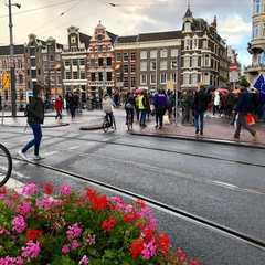 Bloemenmarkt | POPULAR Trips, Photos, Ratings & Practical Information