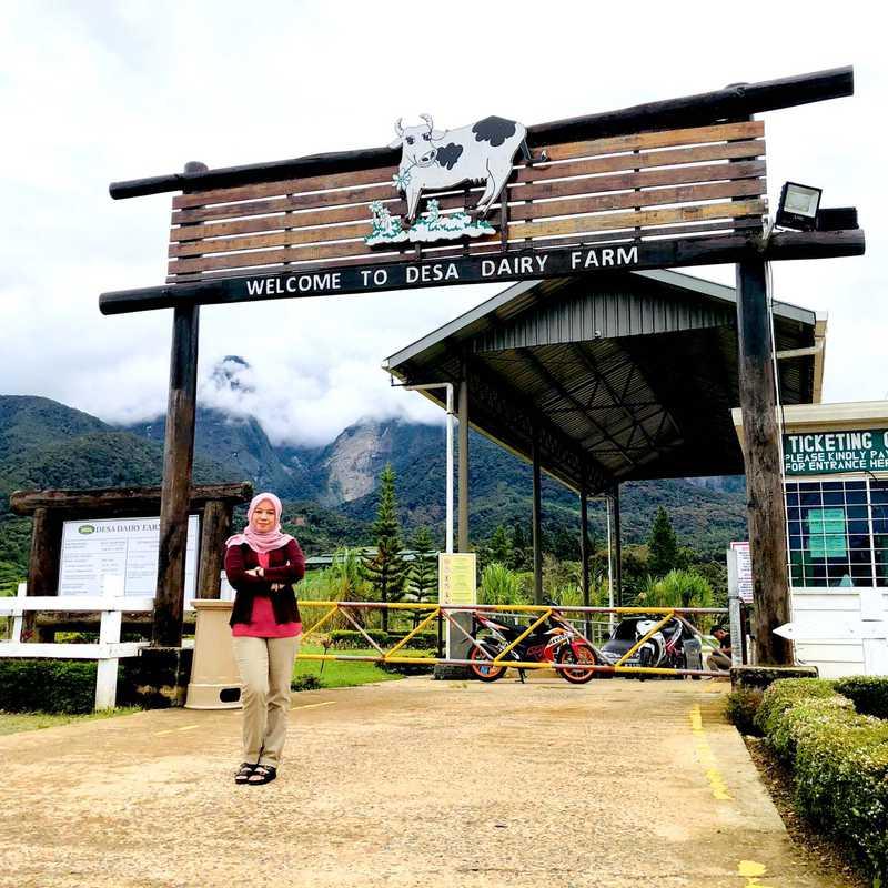 Desa Cattle Dairy Farm