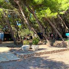 Golden Horn Beach / Plaža Zlatni rat   POPULAR Trips, Photos, Ratings & Practical Information
