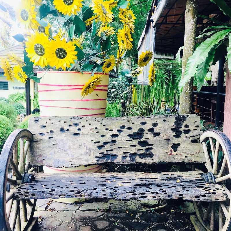 Puerto Princesa - Hoptale's Destination Guide