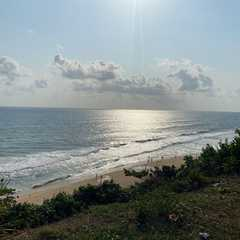Varkala Beach | Travel Photos, Ratings & Other Practical Information