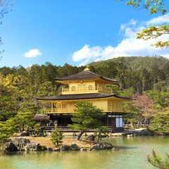 Kinkaku-ji Temple / 金閣寺   POPULAR Trips, Photos, Ratings & Practical Information