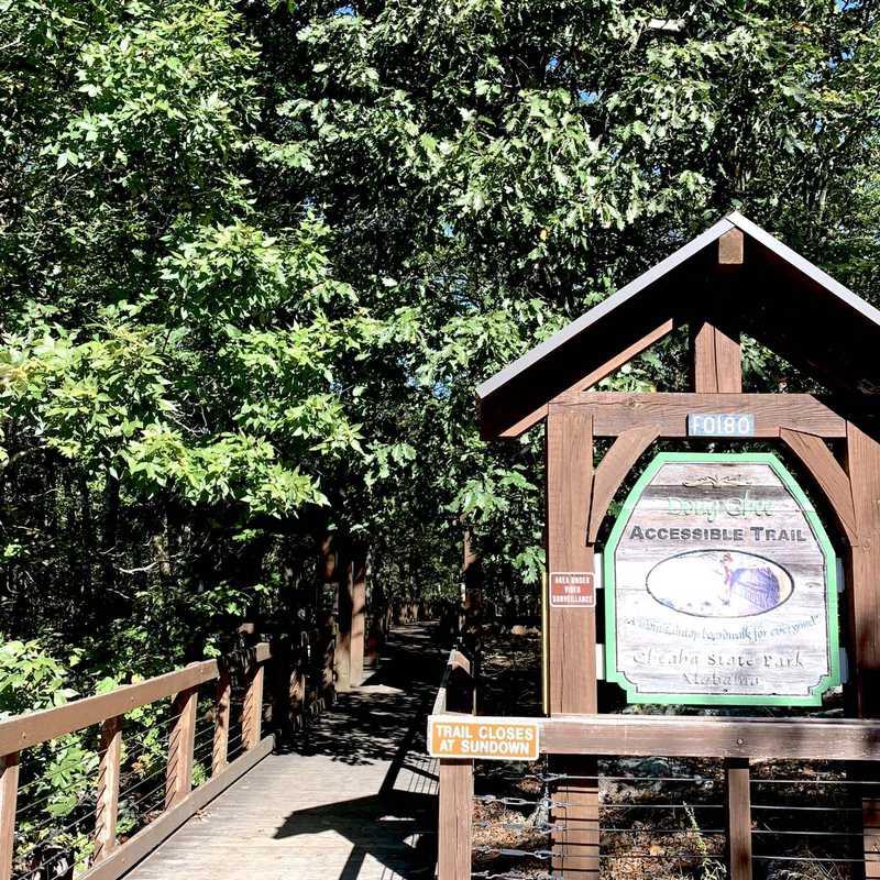 Bald Rock Group Lodge