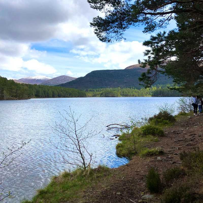 Trip Blog Post by @exploringwkim: Aviemore 2019 | 3 days in May (itinerary, map & gallery)
