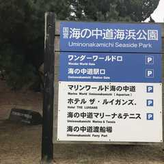 Uminonakamichi Seaside Park - Photos by Real Travelers, Ratings, and Other Practical Information