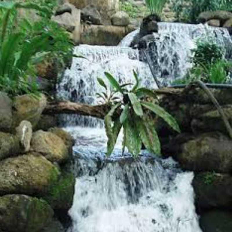 Trip Blog Post by @issafilipinas: Pasonanca Natural Park, Zamboanga City, Philippines   1 day in Sep (itinerary, map & gallery)