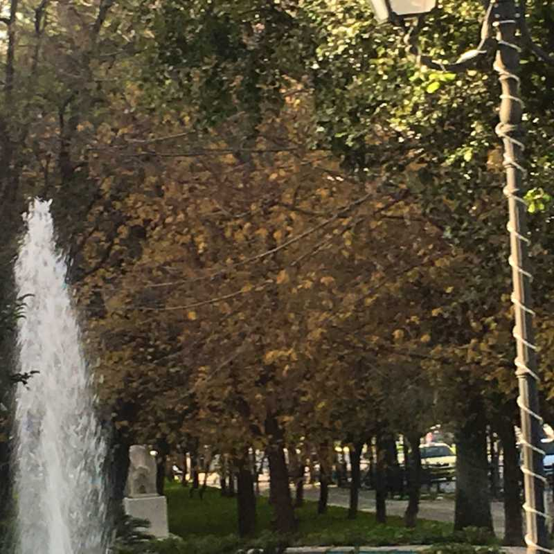 Rizari Park