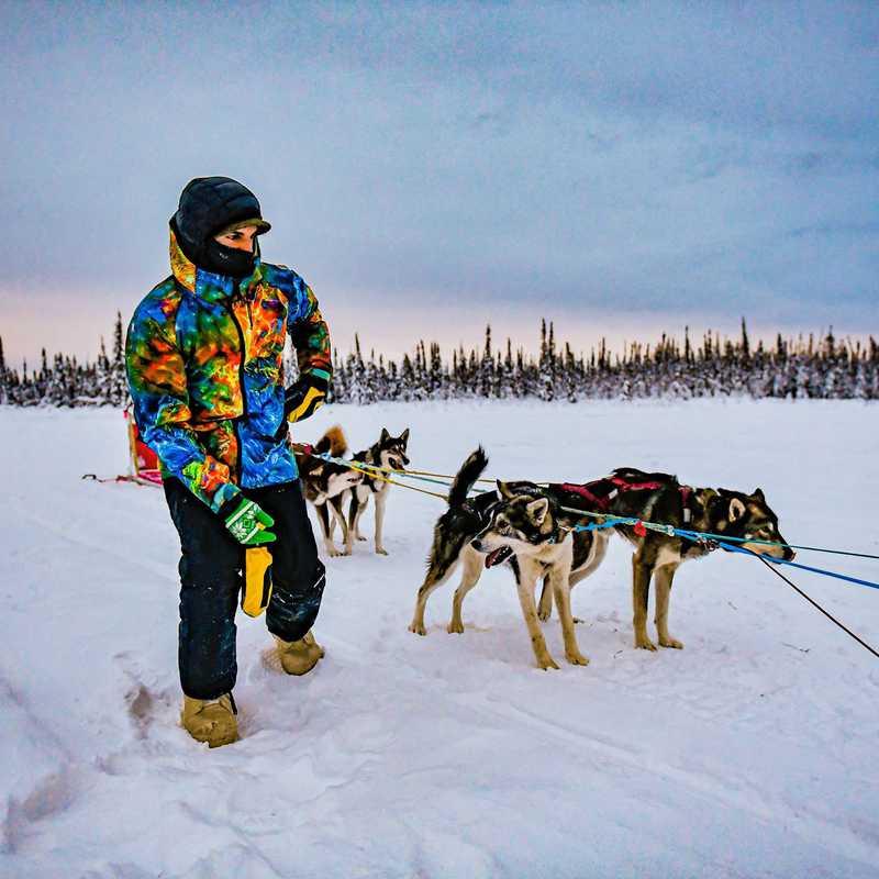 Rod's Alaskan Guide Service Dog Sledding