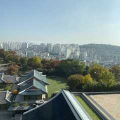 Seoul Shilla Hotel - Photos by Real Travelers, Ratings, and Other Practical Information