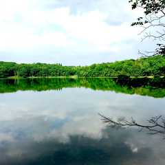 E.N. Huyck Preserve | POPULAR Trips, Photos, Ratings & Practical Information