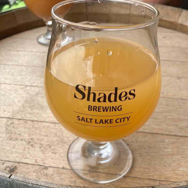 Shades Brewing