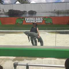 Everglades Holiday Park Airboat Tours and Rides