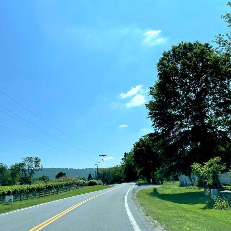 Frederic Wine Trail
