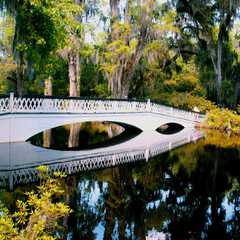 Magnolia Plantation and Gardens | POPULAR Trips, Photos, Ratings & Practical Information