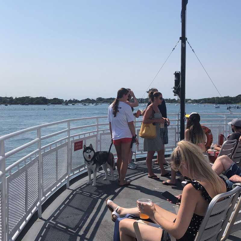 Vineyard Ferries