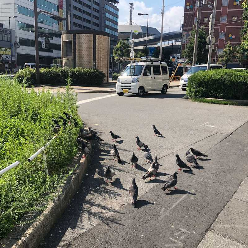 Motomachinaka Park