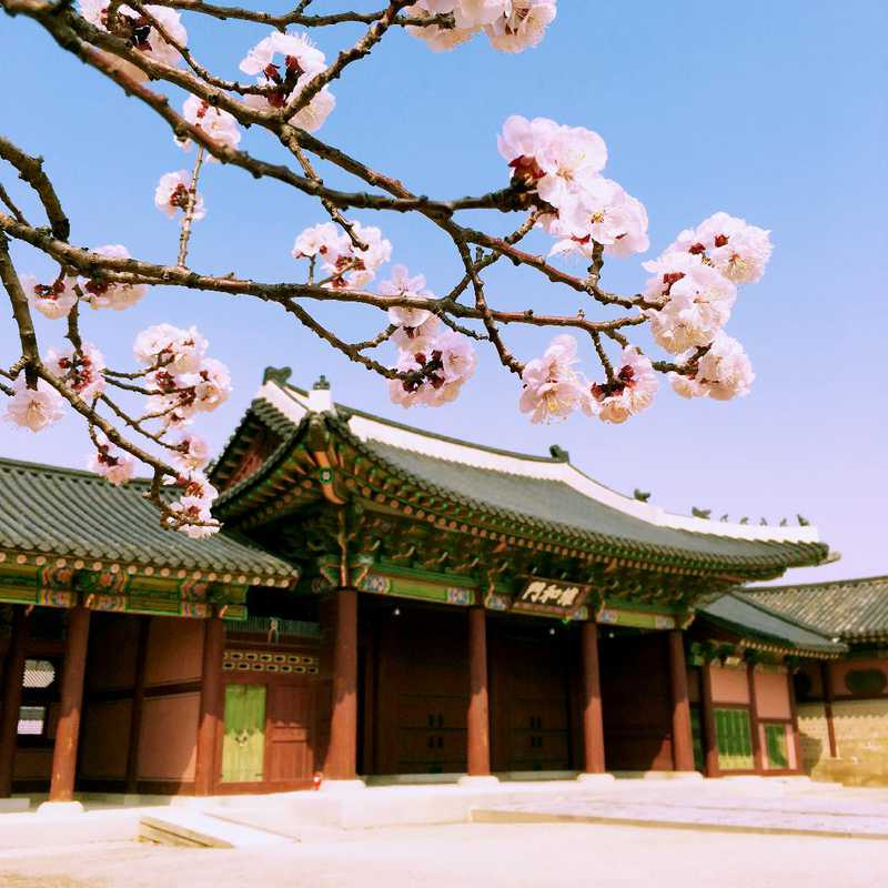 Trip Blog Post by @triptsy: Seoul Weekend Getaway | 3 days in Apr (itinerary, map & gallery)