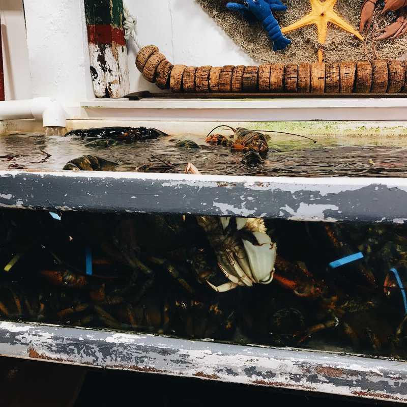 Roy Moore's Fish Shack Restaurant