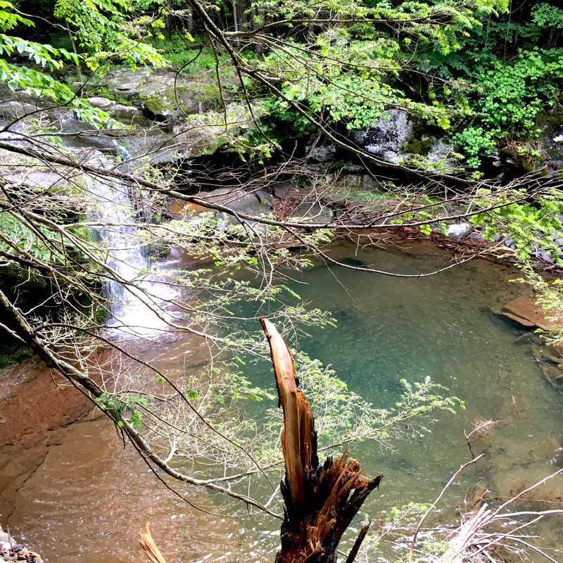 Thorp Creek Falls