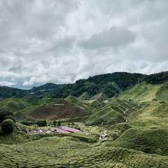 Pahang - Selected Hoptale Photos