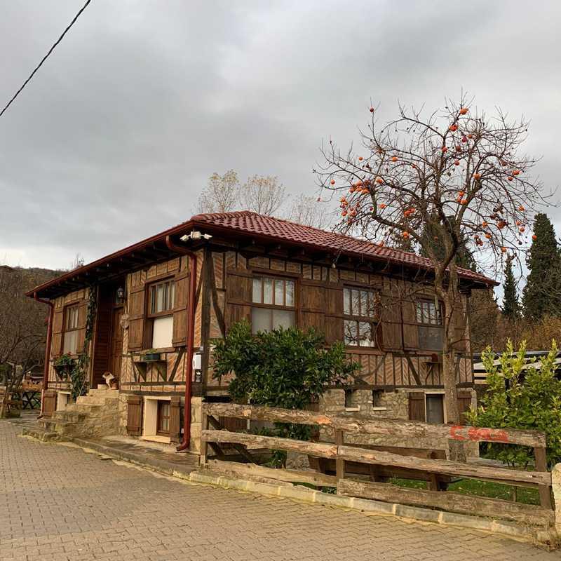 Papuli Köyevi