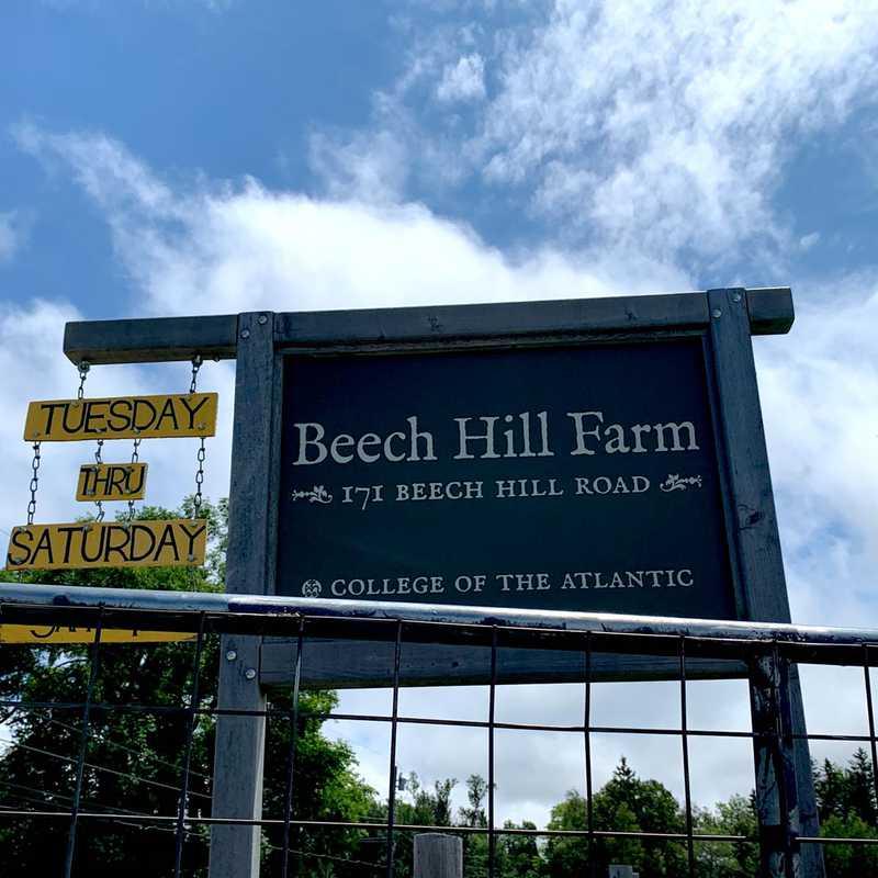 Beech Hill Farm